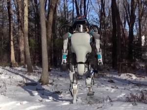Robots walk